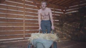 Un uomo barbuto in vetri con un fieno di trasporto del torso nudo su un carretto Il proprietario di ranch lavora all'azienda agri video d archivio