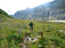 Un uomo che cammina sul prato vicino alle montagne alpine Svizzera, Unterstock, Urbachtal di un lago glacier Fotografie Stock