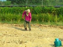 Un uomo che coltiva nell'azienda agricola Immagine Stock