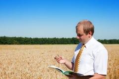 Un uomo che si leva in piedi nel campo di frumento Immagini Stock Libere da Diritti