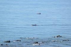 Un uomo che sta sulla barca nell'oceano Fotografia Stock Libera da Diritti