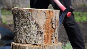 un uomo che taglia legno a pezzi con un'ascia un rosso del ceppo Spezzettamento del legno a pezzi con un'ascia archivi video