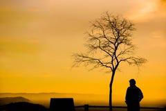 Un uomo con un albero sfrondato fotografia stock libera da diritti