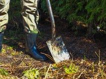 Un uomo con uno shoveln immagini stock