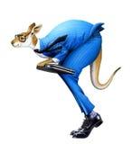 Un uomo d'affari del canguro Fotografie Stock