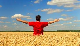 Un uomo dell'agricoltore in una maglietta rossa che sta in un campo di grano tira le sue mani verso il cielo Composizione concett fotografia stock libera da diritti
