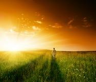 Un uomo e campo dell'erba di estate Immagine Stock