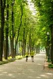 Un uomo e una donna in abiti sportivi che fanno un trotto di mattina nel parco in primavera o l'estate Stile di vita attivo sano fotografie stock