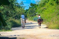 Un uomo e una donna guidano su un cavallo di baia e di bianco fotografie stock libere da diritti