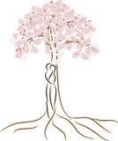 Un uomo e una donna sotto la ciliegia Immagini Stock Libere da Diritti