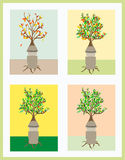Un uomo gradisce un albero Fotografie Stock