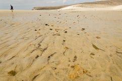 Un uomo ha perso sulla spiaggia a bassa marea fotografia stock libera da diritti