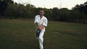 Un uomo nel karatè di pratica di kata del kimono bianco nelle prime ore del mattino nel parco della città video d archivio