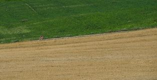 Un uomo non identificabile che cicla su una strada campestre immagine stock