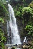 Un uomo si siede accanto a Catarata Zamorawaterfall nel parco di Los Choros in Costa Rica immagini stock