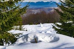 Un uomo solo della neve fotografia stock
