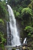 Un uomo sta accanto a Catarata Zamora nel parco di Los Chorros in Costa Rica immagini stock