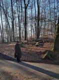 Un uomo sta camminando in una foresta di autunno immagine stock