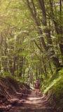 Un uomo sta facendo un'escursione tramite una strada del fango della foresta Avventura, turismo, foresta, colline immagine stock libera da diritti