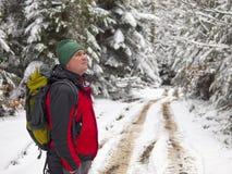 Un uomo sta nella foresta dell'inverno Fotografia Stock