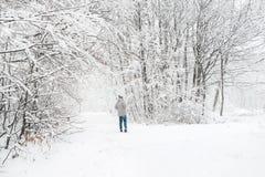 Un uomo in una vista nevosa della foresta da lontano Immagine Stock
