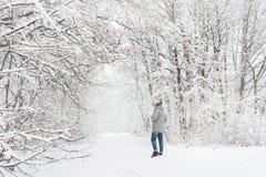 Un uomo in una vista nevosa della foresta da lontano Fotografia Stock Libera da Diritti
