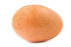 Un uovo Immagini Stock