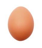 Un uovo Fotografia Stock Libera da Diritti