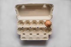 Un uovo Fotografia Stock