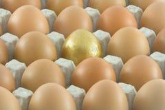 Un uovo dorato con molte uova ordinarie Fotografia Stock Libera da Diritti