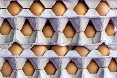 Un uovo fresco del pollo nel vassoio dell'uovo impilato insieme in un damerino Immagini Stock Libere da Diritti