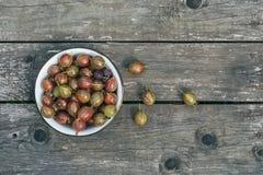 Un urlare delle uva spina su una superficie di legno Immagini Stock Libere da Diritti