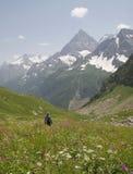 Un valle Foto de archivo libre de regalías