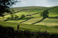Un valle de Yorkshire Imagen de archivo libre de regalías