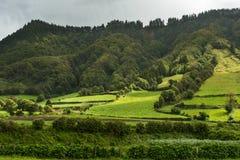 Un valle verde en el sao Miguel Azores Foto de archivo