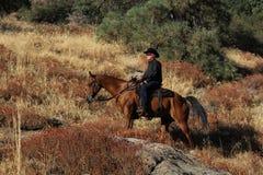 Un vaquero que monta los rastros. imagen de archivo