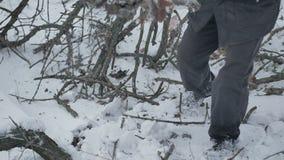 Un varón del leñador cosecha la madera en el invierno metrajes