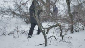 Un varón del leñador cosecha la madera en el invierno almacen de video