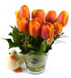 Un vase d'isolement avec des tulipes avec un caneton Photo stock