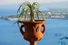 Un vaso sulla baia di Taormina Immagine Stock