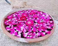 Un vassoio di argilla con in pieno dei fiori fotografia stock