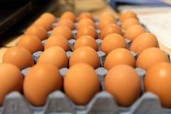 Un vassoio di uova Immagini Stock Libere da Diritti