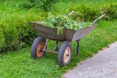 Un vecchio carrello del giardino con le ortiche di verde ed altre erbacce fotografie stock