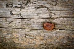 Un vecchio chiodo arrugginito è martellato in una superficie di legno immagini stock
