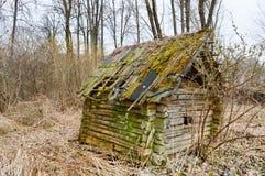 Un vecchio, dilapidato poca casa rotta frusciante rovinata abbandonata di legno di legno, dei ceppi e dei bastoni coperti di musc immagine stock
