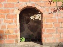 Un vecchio forno parziale costruito del mattone Fotografia Stock