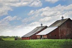 Un vecchio granaio rosso nell'Illinois su una bella nuvola ha riempito il giorno Immagine Stock