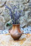 Un vecchio vaso vuoto Fotografie Stock
