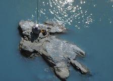 Un veiw de au-dessus de la rivière image libre de droits