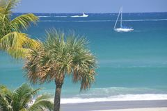 Un velero se desliza más allá de la palmera frente al mar a lo largo del litoral del este Imagen de archivo